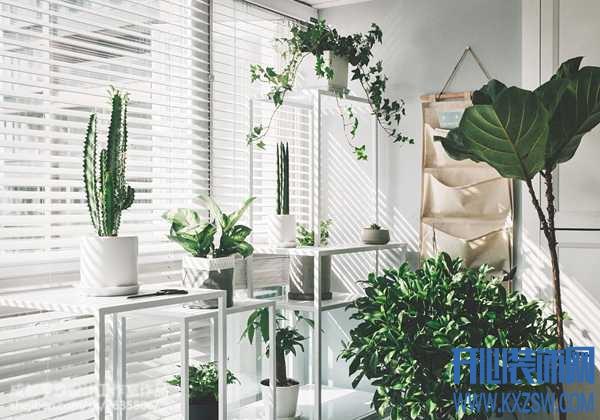 阳台上的花架设计,为两点一线的枯燥生活增添生机