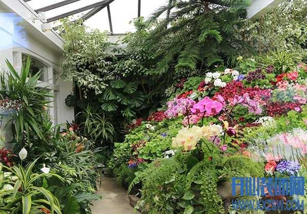 40㎡私人花园怎么布置好看?花卉植物如何选择分布呢