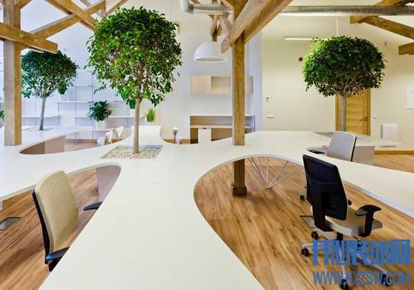 办公桌上少了点绿,感觉工作都没劲了,办公室绿植巧运用
