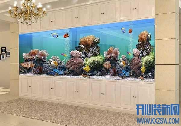 养鱼爱好者的福音!关于鱼缸清理方法大放送