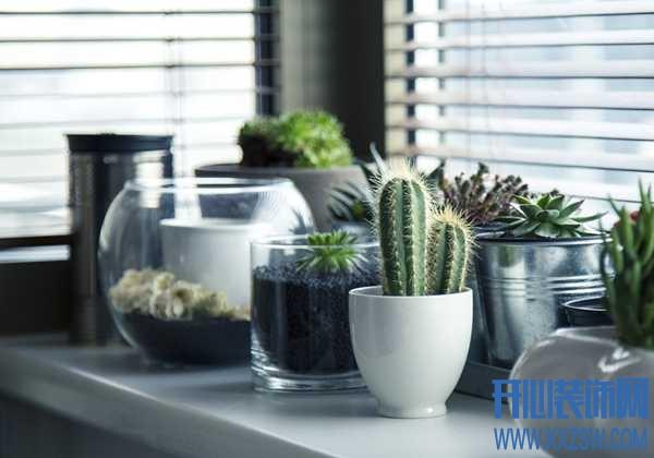 什么样的是自然装修风格?房子的家具绿植如何搭配