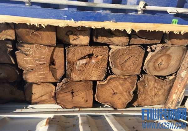 刺猬紫檀家具正确鉴别方法有哪些?怎么看刺猬紫檀木材是真是假